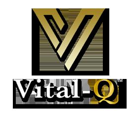 vitalQheader